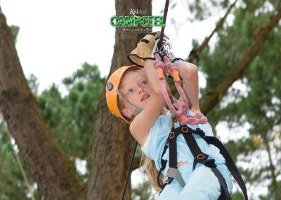 Tree Top Activities